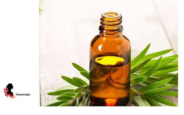 aceite de arbol de te para las encias
