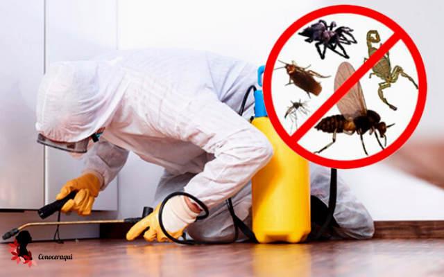 control de plagas a domicilio