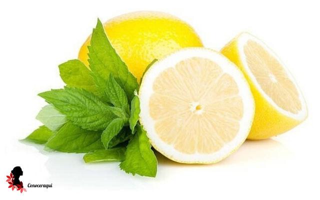 limon menta y vinagre para eliminar garrapatas