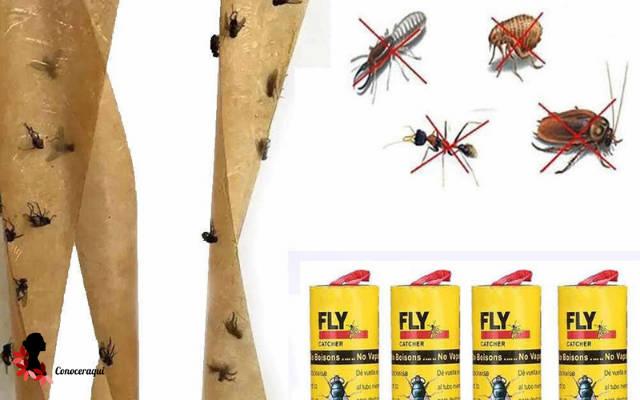 trampa adhesiva para eliminar moscas
